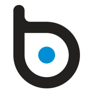 BlueDot Inc.